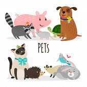 Cartoon Character Groups Of Vector Pets Isolated On White Background. Illustration Of Pets Animal, K poster