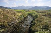 River Caragh & Mullaghanattin Mountains