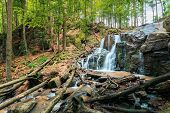 Waterfall In The Forest. Beautiful Spring Scenery. Water Comes Out Of Rocky Cliff. Fallen Trees In T poster