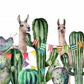 Watercolor Card With A Pair Of Llamas Peek Out Of The Cactus Bushes. Hand Painted Illustration With  poster