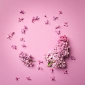 Frame Of Branches And Flowers Of Lilac On A Pink Background.blank For Cards For Spring, Easter, Moth poster