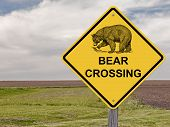 Caution Sign - Bear Crossing