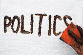 Muddy Politics.