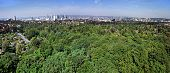 Distant Frankfurt Panorama With City Forest