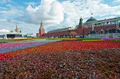 Flower carpet o Red Square