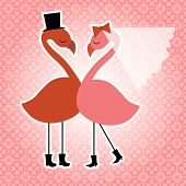 Flamingo bride and groom esp10