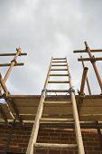 Construction Ladder