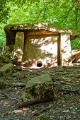 Old stone dolmen in a summer forest