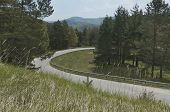 Panorama de pintorescos bosques y carreteras de montaña