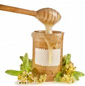 linden honey in birch bark barrel and honey stick isolated on white background