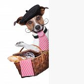 stock photo of french beret  - french dog with Picnic basket behind placard - JPG
