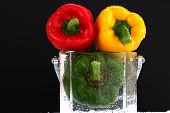 three fresh sweet pepper isolated and black blackgroung