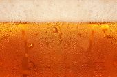 Beer Foam.