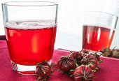 Hibiscus Tea3