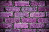 Brick Wall Background -  Radiant Orchid