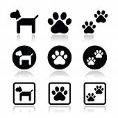 Dog, paw prints vector icons set