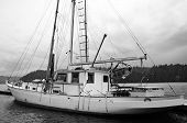 Black And White Sailboat Docked In Harbor