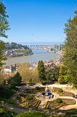 View From Crystal Palace Gardens In Porto