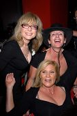 Nina Hartley, Sharon Mitchell, Ginger Lynn at the