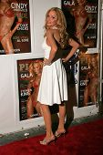 LOS ANGELES - NOVEMBER 22: Cindy Margolis at a party celebrating Cindy's December 2006 Playboy Magaz