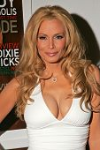 LOS ANGELES - NOVEMBER 22: Cindy Margolis at a party celebrating Cindy's December 2006 Playboy Magazine Cover at Privilege on November 22, 2006 in Los Angeles, CA.