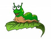 foto of caterpillar cartoon  - Green cartoon caterpillar insect with smile on tree leaf - JPG