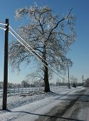 stock photo of icy road  - Ice covered telephone lines along rural road - JPG