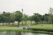 image of caddy  - A beautiful golf course with caddies in a nice day