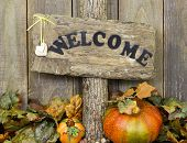 Rustic welcome sign with autumn leaves border
