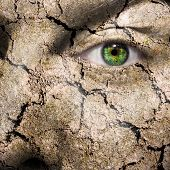 Conceptual Image Of A Mud Cracked Face