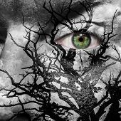 pic of medusa  - Face with green eye painted with medusa like tree - JPG