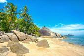 A beautiful tropical beach with palm trees at Koh Phangan island, Thailand