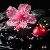 Beautiful Spa Setting Of Delicate Pink Hibiscus, Zen Stones With Drops, Candle And Pearl Beads On Wa