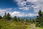 Amazing Summer Mountain Landscape With Blue Sky And Clouds