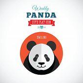 Weekly Panda Cute Flat Animal Icon - Smiling