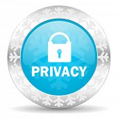 privacy icon, christmas button