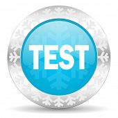 test icon, christmas button