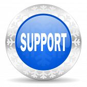 support blue icon, christmas button