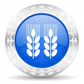 agricultural blue icon, christmas button