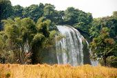 Постер, плакат: Straw In Rice Field Front Of Ban Gioc Waterfall In Vietnam