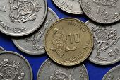 picture of dirhams  - Coins of Morocco - JPG