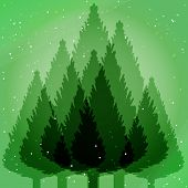 Abstract fir tree forest green backdrop