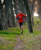 Young Man Running on the Trail in the Wild Forest. Active Lifestyle