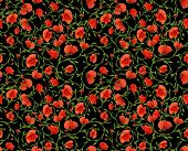 red poppy flower ornamental seamless background