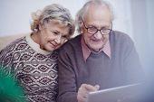Modern seniors spending leisure online