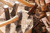Woodsplitting Log