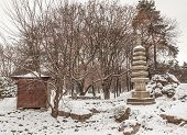 Public Garden In Kiev In The Japanese Style Done In Honor Of The Sister City Of Kiev Kyoto