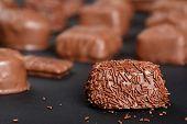Gourmet Fancy Milk Chocolate