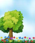 Illustration of a beautiful nature scene