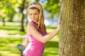 Fit blonde stretching against a tree on a sunny day